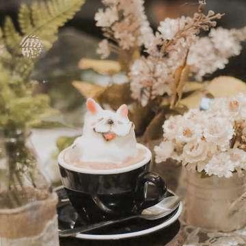 Delightful night with a cup of cute latte art from @sakabistrobar l #ABBandungTrip #Bandung #Sakabistrobar #andrebinarto #anakkopi #masfotokopi #coffeeshop