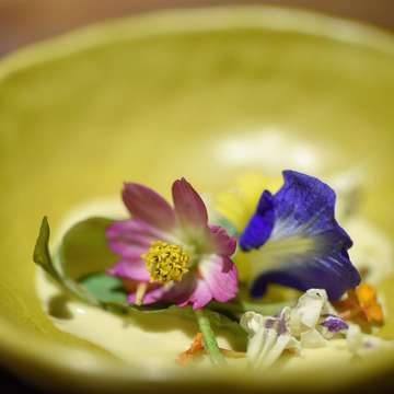 One of the best meals I've had is at Restaurant Locavore. It's all about local produce and humble ingredients. Go local or go home. No need for luxury ingredients whatsoever. What a meal!!! . . . . Edible flowers, Kecombrang Emulsion, Cricket Oil. #palatism_locavore #golocalorgohome #food #foodie #foodbeast #foodiegram #feedfeed #yum #nomnom #instagood #instafood #buzzfeast #bhgfood #foodgawker #thekitchn #forkfeed #foodporn #foodstagram #foodgasm #foodphotography #beautifulcuisines #foodshare #onthetable #gastronogram #eeeeeats #palatismbali